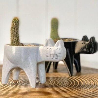 Cat Cactus Planters